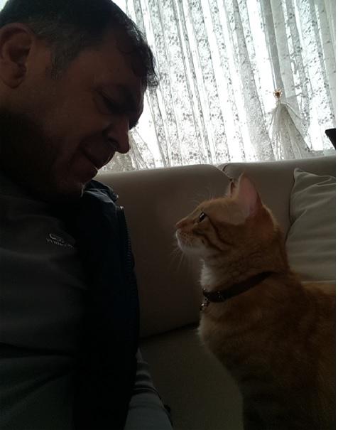 İsmail-Kedi